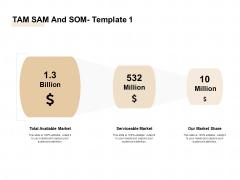 TAM SAM And SOM Ppt Outline Brochure PDF