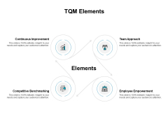 TQM Elements Ppt PowerPoint Presentation Pictures Tips