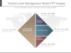 Tactical Level Management Model Ppt Images