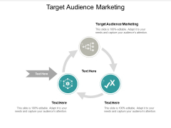 Target Audience Marketing Ppt PowerPoint Presentation Infographic Template Guidelines Cpb