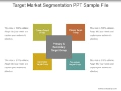 Target Market Segmentation Ppt Sample File