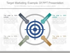 Target Marketing Example Of Ppt Presentation
