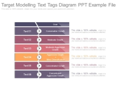 Target Modelling Text Tags Diagram Ppt Example File