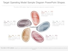 Target Operating Model Sample Diagram Powerpoint Shapes