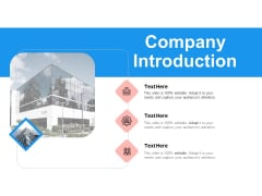 Target Persona Company Introduction Ppt Slides Gallery PDF