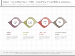 Target Return Maximize Profits Powerpoint Presentation Examples
