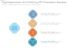 Target Segmentation And Positioning Ppt Presentation Examples