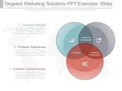 Targeted Marketing Solutions Ppt Examples Slides