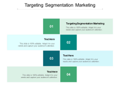 Targeting Segmentation Marketing Ppt PowerPoint Presentation Ideas Graphics Tutorials Cpb