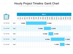Task Hourly Schedule Gantt Chart Ppt PowerPoint Presentation Portfolio Examples PDF