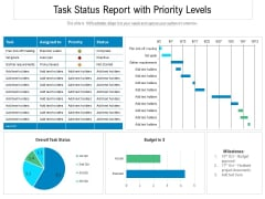 Task Status Report With Priority Levels Ppt PowerPoint Presentation Gallery Information PDF