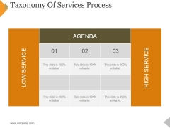 Taxonomy Of Services Process Ppt PowerPoint Presentation Icon Template