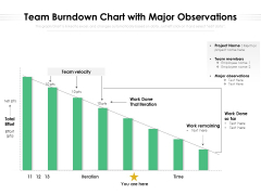 Team Burndown Chart With Major Observations Ppt PowerPoint Presentation Professional Template PDF