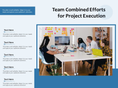 Team Combined Efforts For Project Execution Ppt PowerPoint Presentation Infographics Guidelines PDF