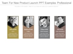 Team For New Product Launch Ppt Examples Professional