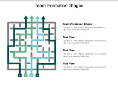 Team Formation Stages Ppt Powerpoint Presentation File Summary Cpb