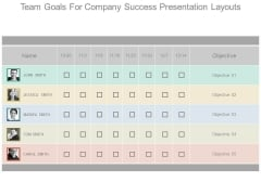 Team Goals For Company Success Presentation Layouts