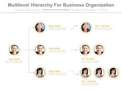 Team Hierarchy For Business Organization Powerpoint Slides