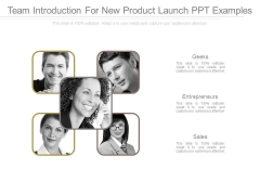 Team Introduction For New Product Launch Ppt Examples