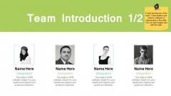 Team Introduction Planning Ppt PowerPoint Presentation Summary Slides