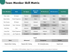 Team Member Skill Matrix Ppt PowerPoint Presentation Gallery Inspiration