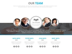 Team Of Professionals For Specific Task Powerpoint Slides