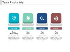 Team Productivity Ppt PowerPoint Presentation File Slides Cpb