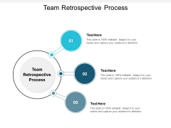 Team Retrospective Process Ppt PowerPoint Presentation Slides Themes Cpb
