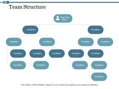 Team Structure Ppt PowerPoint Presentation Portfolio Topics