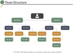Team Structure Ppt PowerPoint Presentation Styles Template