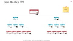 Team Structure Teamwork Business Analysis Method Ppt Portfolio Show PDF