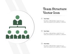 Team Structure Vector Icon Ppt PowerPoint Presentation Infographics Pictures PDF