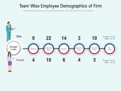 Team Wise Employee Demographics Of Firm Ppt PowerPoint Presentation File Outfit PDF