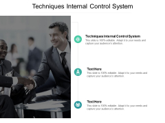 Techniques Internal Control System Ppt PowerPoint Presentation Pictures Templates Cpb