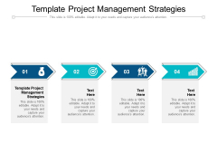 Template Project Management Strategies Ppt PowerPoint Presentation Inspiration Files Cpb Pdf