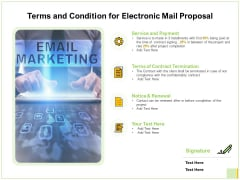 Terms And Condition For Electronic Mail Proposal Ppt Inspiration Microsoft PDF
