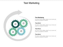 Test Marketing Ppt PowerPoint Presentation Summary Guidelines Cpb