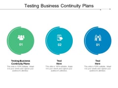 Testing Business Continuity Plans Ppt PowerPoint Presentation File Infographic Template Cpb