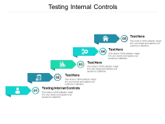 Testing Internal Controls Ppt PowerPoint Presentation Gallery Outline Cpb