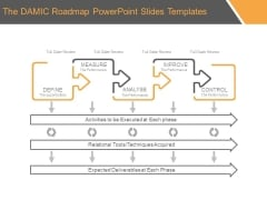 The Damic Roadmap Powerpoint Slides Templates