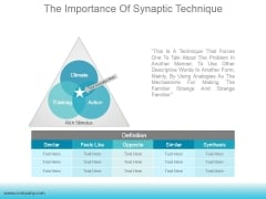 The Importance Of Synaptic Technique Ppt PowerPoint Presentation Templates