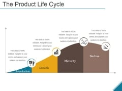 The Product Life Cycle Ppt PowerPoint Presentation Slides