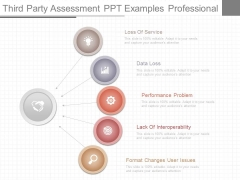Third Party Assessment Ppt Examples Professional