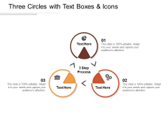 Three Circles With Text Boxes And Icons Ppt PowerPoint Presentation Layouts Master Slide