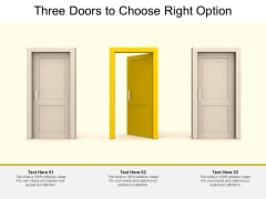 Three Doors To Choose Right Option Ppt PowerPoint Presentation Pictures Skills