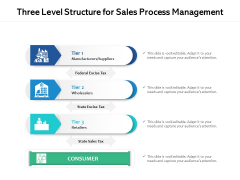 Three Level Structure For Sales Process Management Ppt PowerPoint Presentation Gallery Clipart PDF