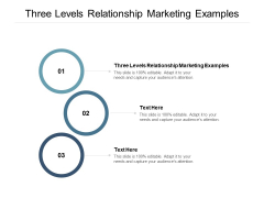 Three Levels Relationship Marketing Examples Ppt PowerPoint Presentation Ideas Display