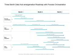 Three Month Data Hub Amalgamation Roadmap With Process Orchestration Diagrams