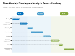 Three Monthly Planning And Analysis Process Roadmap Portrait