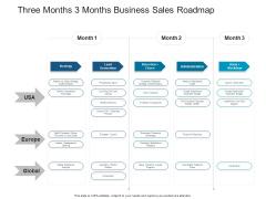 Three Months 3 Months Business Sales Roadmap Demonstration